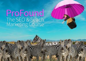 Profound | The SEO and Search Engine Marketing Course | Britefire